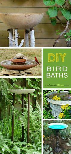Home made solar powered bird bath fountain tribenet