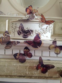 10 Natural 3D Butterflies Butterfly Picture Frame Home Wall Wedding Decorations