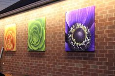 One of our customers (Floral Designs of Mt. Joy) decided to get creative and entice people to check out the shop with these awesome canvases! The macro shots of DVFlora product are amazing! We love it!