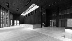 Terry Pawson Architects > Opera House. Linz, Austria