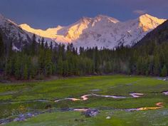 Nanga Parbat, from Fairy Meadows, Diamir District, Pakistan Photographic Print by Michele Falzone at Art.com