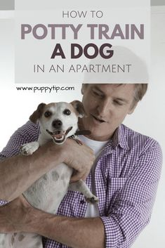 Training your dog is mostly about building your relationship with your pet dog and implementing boundaries. Be firm but consistent and you will notice outstanding results in your dog training efforts. Dog Training Methods, Basic Dog Training, Dog Training Techniques, Training Your Puppy, Potty Training, Training Dogs, Training Online, Training Schedule, Toilet Training