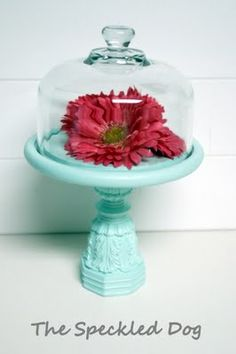 Painted in Martha Stewarts Paint (maybe 'duck egg'), this is a great remake of a wooden cheese plate and dome on a found and married pedestal base.  What a great transformation. :)