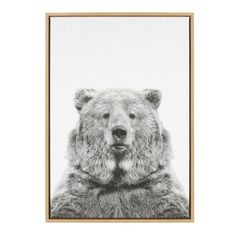 """Kate and Laurel 33 in. x 23 in. """"Bear European"""" by Tai Prints Framed Canvas Wall Art 212644 - The Home Depot Canvas Frame, Canvas Wall Art, Canvas Prints, Canvas Canvas, Large Canvas, Canvas Paintings, Canvas Display, Bear Images, Black And White Portraits"""