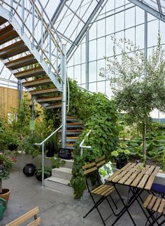 Image 7 of 24 from gallery of Uppgrenna Nature House / Tailor Made arkitekter. Photograph by Ulf Celander Natur House, Home Greenhouse, House In Nature, Patio Interior, Earthship, Glass House, Contemporary Architecture, Architecture Design, Outdoor Living