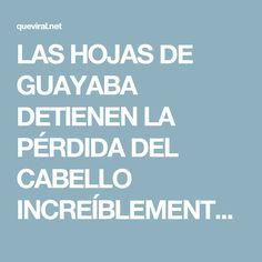 LAS HOJAS DE GUAYABA DETIENEN LA PÉRDIDA DEL CABELLO INCREÍBLEMENTE AL 100% Y HACERLO CRECER COMO LOCO!!   QueViral