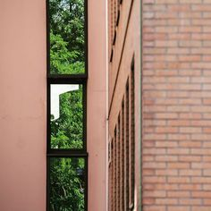 [ shooting immo ] Feuilles et briques . . #building#reflexion#reflets#reflection#anotherbrickinthewall#brick#brique#immeuble#immobilier#glassreflection#window#windowreflection#architecture#igdaily#dailygram#archi#workplace#lines#blur#bokeh#pure#minimalist#minimalismo#minimalism
