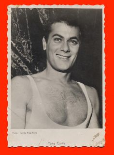 7345 Tony Curtis Movie Star Collectible Photo 1950s