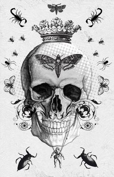 Skull and bugs