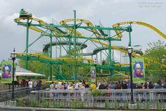 Ragin' Cajun - Six Flags Great America (Gurnee, Illinois, United States) Six Flags America, Great America, Water Parks, Roller Coasters, Superhero Design, Amusement Parks, Best Vacations, Scream, Good Times
