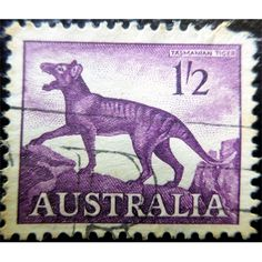 Australia, Tasmanian Tiger, shilling, 1961 used Tasmanian Tiger, Antiques Online, Coins For Sale, Hindu Art, Rare Coins, Antique Shops, Wild Life, Postage Stamps, Countries