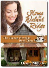 Home To Walnut Ridge by Diane Moody ebook deal