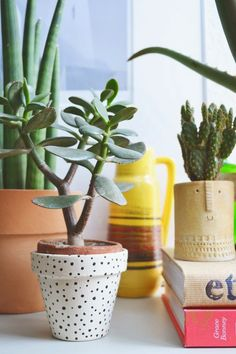 As you know I am a big fan of succulents and cacti and I have seen some really inspiring images on Pinterest and Instagram which have just a...