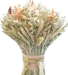 Something to cheer me up on a drizzly spring day- love this Seashore Beach Wheat Cone Bundle as a centerpiece on the table or accent on the mantle. It's all the best of country and beach. I can almost hear the waves crashing....  - DriedDecor.com#homedecor #springdecor #countrydecor #beachdecor #driedwheat #driedflowers