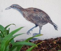 On a corner of the Rotorua District Library Building, by Adrienne Grant. Korokoro Manu is part of Sustainable Backyards Month (March organised by the Hannahs Bay Community Restoration Trust. Backyards, Restoration, Trust, March, Corner, Birds, Community, Random, Building