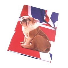 A5 notebook   £5.99   Letts UK