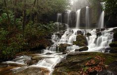 Virginia Hawkins Falls (formerly called Double Falls) - in the Laurel Fork Heritage Preserve in the Jocassee Gorges area of Pickens County, SC;  photo by Rich Stevenson