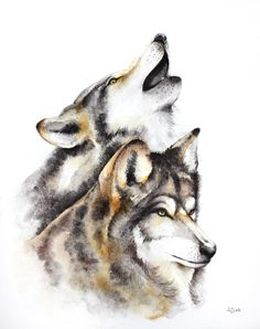 ARTFINDER:  wolves - animals, wildlife watercolo... by Karolina Kijak - Original watercolors of wolves Paper 300g,  100% cotton size 32x44cm  Follow me on facebook: https://www.facebook.com/kijakwatercolors
