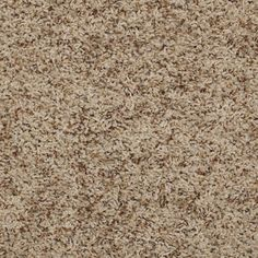 Alamar B Shaw Anso Nylon Carpet Q4532
