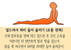 '허리통증' 10초만에 없애주는 운동 3가지 Health Care, Massage, Health Fitness, Hair Beauty, Medical, About Me Blog, Exercise, Yoga, Workout
