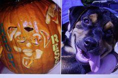 Carved pumpkin - Hawg.