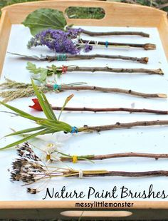 NATURE PAINT BRUSHES How fun would it be to paint with one of these instead of your traditional paintbrush? See more: http://www.messylittlemonster.com/2015/07/stick-craft-nature-paintbrushes.html