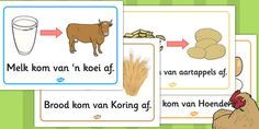 Afrikaans Where Does Food Come From? Fun Learning, Learning Activities, Activities For Kids, Primary Resources, Free Teaching Resources, Afrikaans Language, Classroom Expectations, Learn Another Language, School Posters