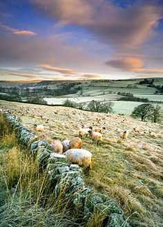 Helmsley. Click here for amazing walking and cycling holidays in the UK  http://www.adventuretravelshop.co.uk/walking-holidays/