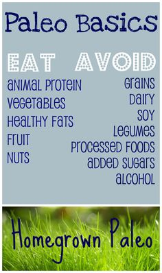 Paleo Basics What to eat on paleo diet