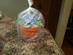 I found this idea online and made it for the fair. I used a giant cupcake pan to make the cake. Buttercream icing with orange and brown food coloring to frost the pot. Fondant was used to make the African Violets and leaves on top.