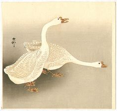 Ohara Koson: Two White Geese - Early 20th Century