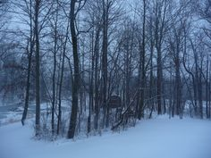 The beauty of a Southern Indiana snowfall