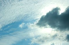 the cumulus and altocumulus may