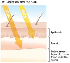 info about SPF