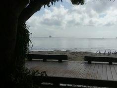 #pocruises  #Cairns #FNQ #exploreTNQ #thisisqueensland #seeaustralia #Australia #view #visit #cairnsrslclub #cruise
