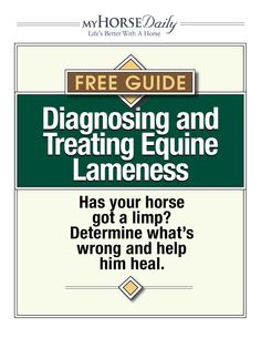 Has your horse got a limp? Determine what's wrong and help him heal