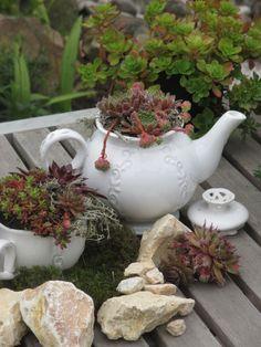 Mini-Garten mit Sukkulenten Mini Garden with Succulents (main Container Gardening, Gardening Tips, Flower Pot Design, Plantation, Succulents Garden, The Conjuring, Garden Paths, Garden Projects, Artificial Flowers