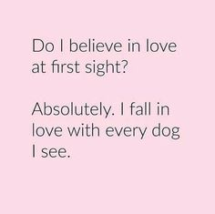 Do I believe in love at first sight ? Absolutely! I fall in love with every dog I see!