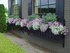 spring window box-How pretty! 2019 spring window box-How pretty! The post spring window box-How pretty! 2019 appeared first on Flowers Decor. Unique Garden, Window Box Flowers, Window Planters, Fall Planters, Garden Windows, Yard Landscaping, Container Gardening, Succulent Containers, Container Flowers