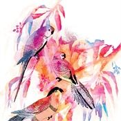 Ella Tjader Illustration Portfolio – Fashion, Art and Nature Illustrator Zurich, Surface Art, Nature Illustration, Flower Illustrations, Simple Line Drawings, Kids Art Class, Photoshop, Art Journal Inspiration, Pictures To Paint