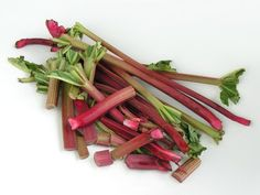 Rhubarb is a perennial that is normally grown in the ground. It is possible to plant rhubarb in a large container. The long pink rhubarb stalks are edible and can be used in...