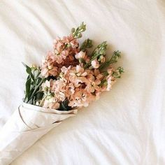 Celebrate the return of warm weather with these fresh floral bouquets and centerpiece ideas. See Domino's top spring flower arrangements. Spring Flower Arrangements, Spring Flowers, Floral Arrangements, Orchid Flowers, Spring Blooms, Cut Flowers, Stock Flower, My Flower, Plants Are Friends