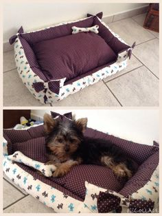 Caminha para o dog Pet Beds, Dog Bed, Fancy Bed, Cat Light, Cute Little Dogs, Animal Room, Pets 3, Schnauzer Dogs, Dog Rooms