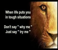 """When life throws you a curve it's best to simply quote Dwayne """"The Rock"""" Johnson and say, Just Bring it....b!tch"""