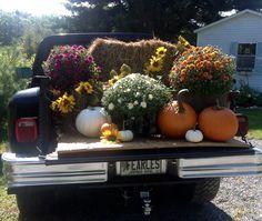 Autumn display at Frenchmans Bay Tea Co., Sorrento, Maine