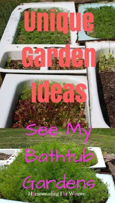 Unique Garden Ideas See My Bathtub Gardens Garden ideas and
