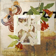 Mixed Media Botanical Prints   Michael Mew inspiration