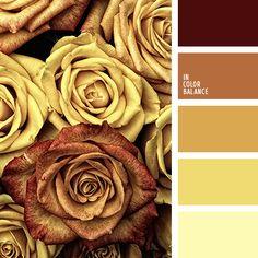 Цветовая палитра №4254