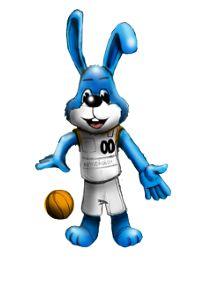 Basketball Ulm - Team