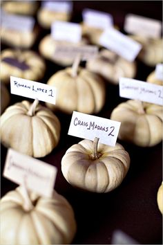 pumpkin escort cards...whit pumpkins are cute, could be around for decoration, not necessarily escort cards